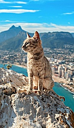 Atop a Mountain, in Calp, Spain (Aleksandr Osipov:NatGeo)